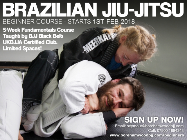 Beginners course - leaflet - 2018